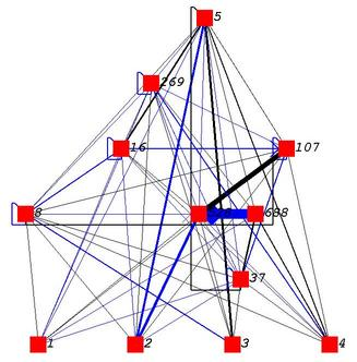NEAT network